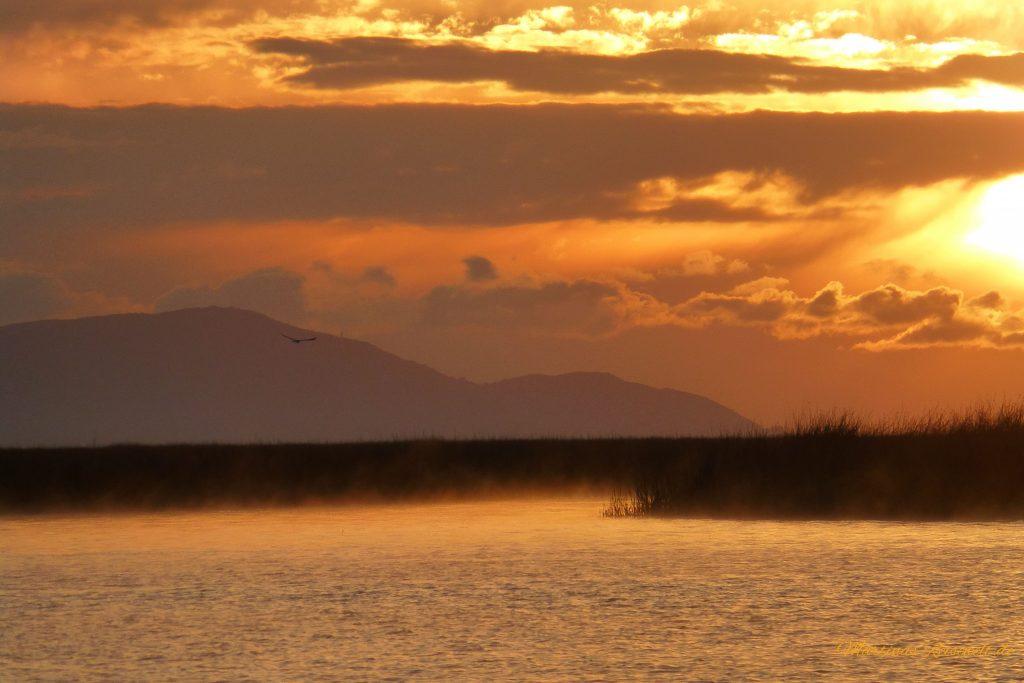 Sonnenaufgang am Titicacasee