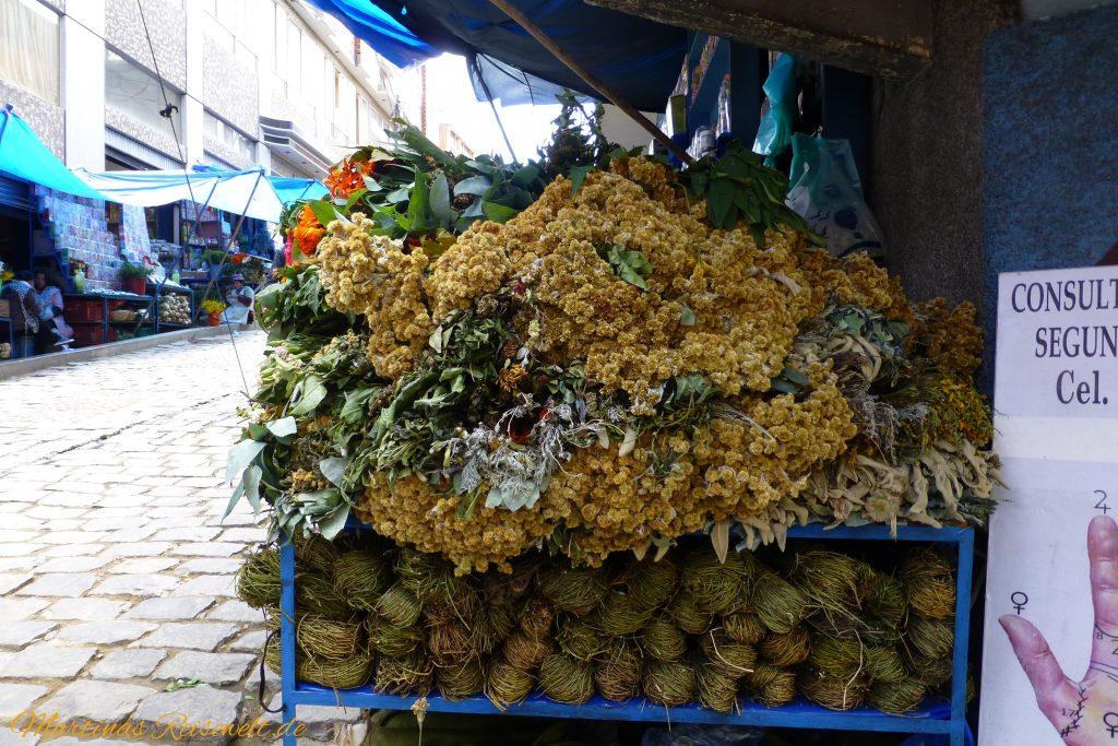 getrocknete Kräuter und Heilpflanzen