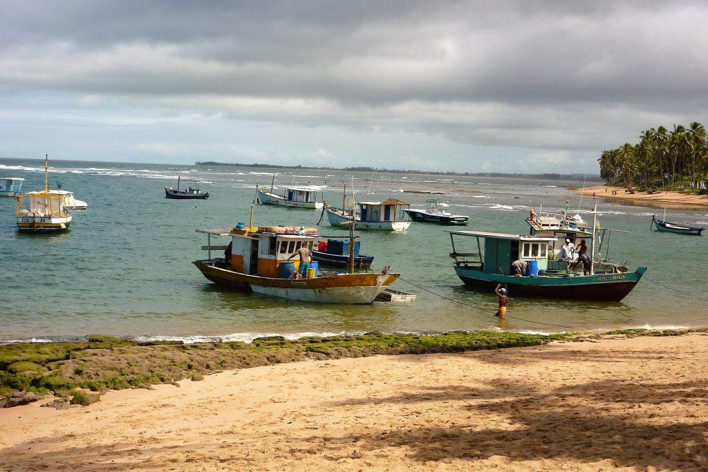 Fischerboote in Praia do Forte