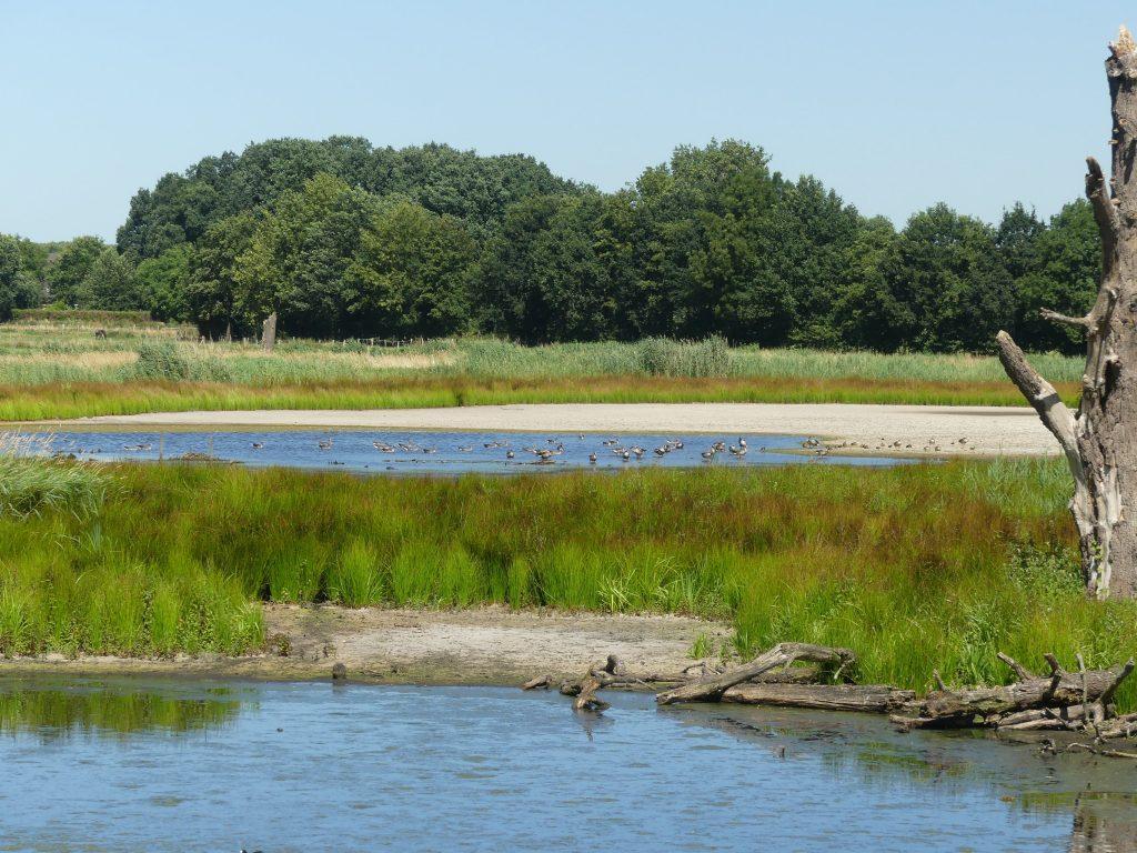 De Wittsee, wunderbare Natur