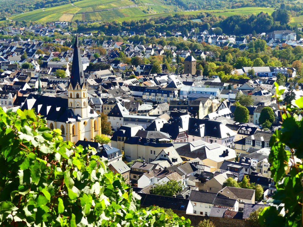 Blick auf Ahrweiler vom Weinberg