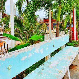 Direkt bei der schönen Kirche in Puerto Morelos sind einige Sitzgelegenheiten. Das von der Kirche geführte Café hatte leider zu. . . . #puertomorelos #puertomorelosmexico #rivieramaya #rivieramayamexico #mexico #mexiko #entdecken #stadtrundgang #instatravel #reiseblog #reisebloggerin #reiseblogger #instamoment #martinasreisewelt