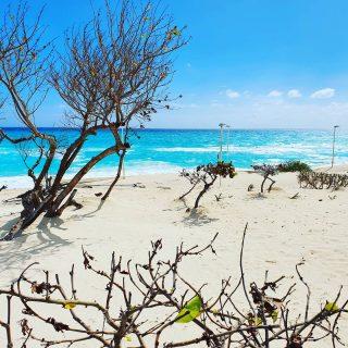 Das Meer ist wunderschön an der Playa Delfines, Cancun.😍😍😍  . . . #playadelfines #playadelfinescancun #cancun #cancunmexico #cancunbeach #quintanaroo #vitaminsea #beach #beachlife #playa #traumhaft #wunderschön #entdecken #betterlife #travelinspiration #travelblogger #travelphotography #travelgram #reiseblog #instatravel #martinasreisewelt