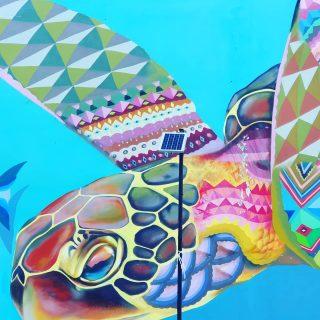 Im türkisen Meer der Riviera Maya leben Meeresschildkröten. Das sensible Oekosystem kann schnell gestört werden. Bitte nicht den Schildkröten hinterherschwimmen oder sie anfassen, das löst Stress und Krankheiten aus. Auch sollte keine Sonnencreme vorm Schnorcheln verwendet werden.  . . . #playadelcarmenmexico #rivieramaya #rivieramayamexico #naturschutz #meeresschildkröte #schildkröte #turtle #tortuga #reisebloggerin #reiseblogger #reiseblog #martinasreisewelt