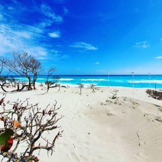 Playa Delfines, öffentlicher Strand in der Hotelzone Cancun. Feiner Sand am türkisblauen Meer.😍😍😍 . . . #playadelfines #playadelfinescancun #cancunbeach #cancunmexico #cancun #quintanaroo #mexiko #mexico #vitaminsea #beachlife #beachvibes #beach #strand #playa #travelinspiration #travelphotography #instabeach #martinasreisewelt