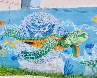 An der Riviera Maya gibt es zum Glück noch viele Meeresschildkröten. Sie sind, wie alle Meeresbewohner, auf unseren Schutz angewiesen. Jeder kann dazu betragen. . . . #meeresschildkröte #meeresbewohner #rivieramayamexico #seaturtle ##streetart #streetartphotography #artwork #murales #mural #muralpainting #reiseblog #entdecken #tulumpueblo  #tulummexico #tulum #martinasreisewelt
