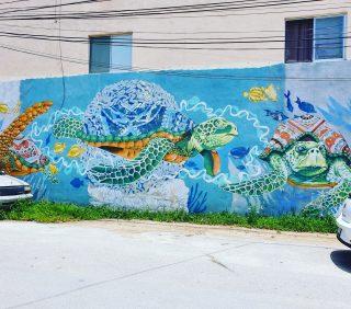 So sieht es an der Wand aus. Ein weiteres schönes Motiv ist leider zugeparkt. . . . #tulumpueblo #tulumvibes #tulummexico #tulumfriends #ilovetulum #tulum #rivieramayamexico #quintanaroomexico #murales #muralpainting #meeresschildkröte #meeresbewohner #seaturtle #reiseblog #entdecken #streetart #martinasreisewelt
