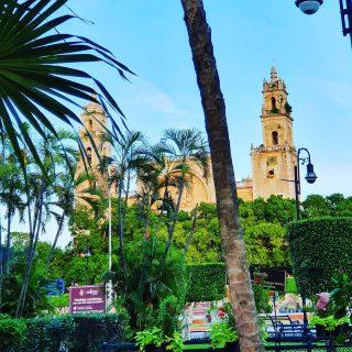Blick auf die Kathedrale von Merida, Yucatan. . . . #kathedrale #meridayucatan #yucatanpeninsula #yucatanmexico #yucatán #yucatan #mexiko #mexico #ilovemexico #reiseblog #reisebloggerin #reiseblogger #fotografieistunserhobby #martinasreisewelt
