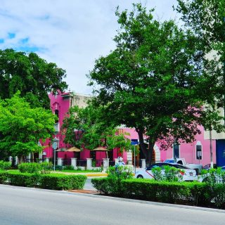 Pretty in Pink💕💕💕 Diese farbliche Schönheit liegt auch am Paseo de Montejo. Zwar neueren Datums, aber hübsch herausgeputzt💕💕💕. Hier könnt ihr gut die Bäume sehen, die den Paseo de Montejo säumen und Schatten spenden. . . . #paseomontejo #meridayucatan #merida #yucatanpeninsula #yucatanmexico #yucatan #instapink #instamexico #instatravel #pink #martinasreisewelt