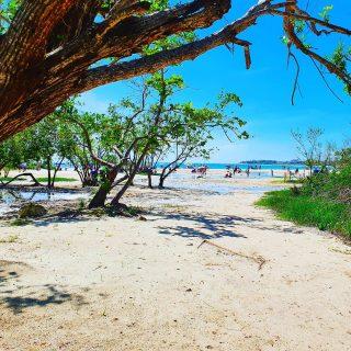 Playa Punta Esmeralda. So sieht es aus, wenn man den Strand erreicht. . . . #playapuntaesmeralda #beach #beachlife #playadelcarmenmexico #vitaminsea #martinasreisewelt