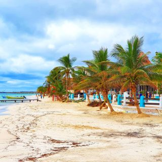 Der Strand von Puerto Morelos. Liegen und Schirme können gemietet werden.🙂🌞🙂 . . . #puertomorelos #puertomorelosmexico #palmen #palmera #palms #playa #beach #strand #vitaminsea #wolken #instatravel #instabeach #reiseblog #reisefotografie #reisebloggerin #martinasreisewelt