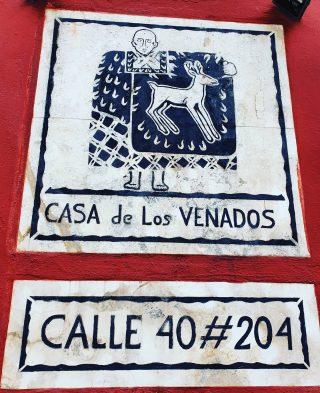 Das Casa de los Venados besitzt eine sehr interessante und farbenfrohe private Kunstsammlung. . . . #casadelosvenados #valladolidyucatan #valladolid #yucatanpeninsula #yucatanmexico #yucatan #kunstsammler #entdecken #besichtigen #instagood #reiseblog #martinasreisewelt  . #werbungdurchnamensnennung