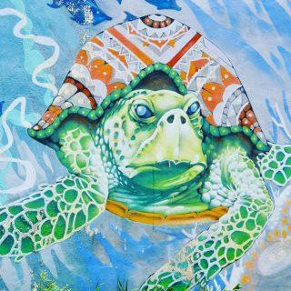 Schildkröten werden oft in Murales verewigt.  . . . #schildkröte #turtle #tortuga #murales #mural #muralpainting #muralart #streetart #streetartphotography #artwork #tulumpueblo #tulummexico #tulumfriends #tulumlovers #ilovetulum #tulum #reisen #entdecken #instamood #instamexico #martinasreisewelt