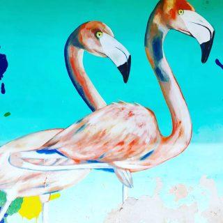 Flamingos gibt es in Mexiko auch in freier Natur zu sehen, zum Beispiel in Celestun. Hier wurden sie als schöne Streetart in Tulum verewigt. 💕💕💕 . . . #streetart #streetartphotography #tulum #tulumlovers #tulumpueblo #tulumvibes #tulummexico #ilovetulum #rivieramayamexico #entdecken #instamexico #martinasreisewelt