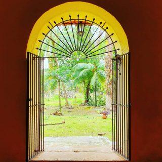 Blick in den Klostergarten, Ex-convento San Bernardino de Siena, Valladolid.  . . . #valladolidyucatan #valladolid #convento #convent #yucatanpeninsula #yucatanmexico #yucatan #ausblick #entdecken #klostergarten #reiseblog #martinasreisewelt